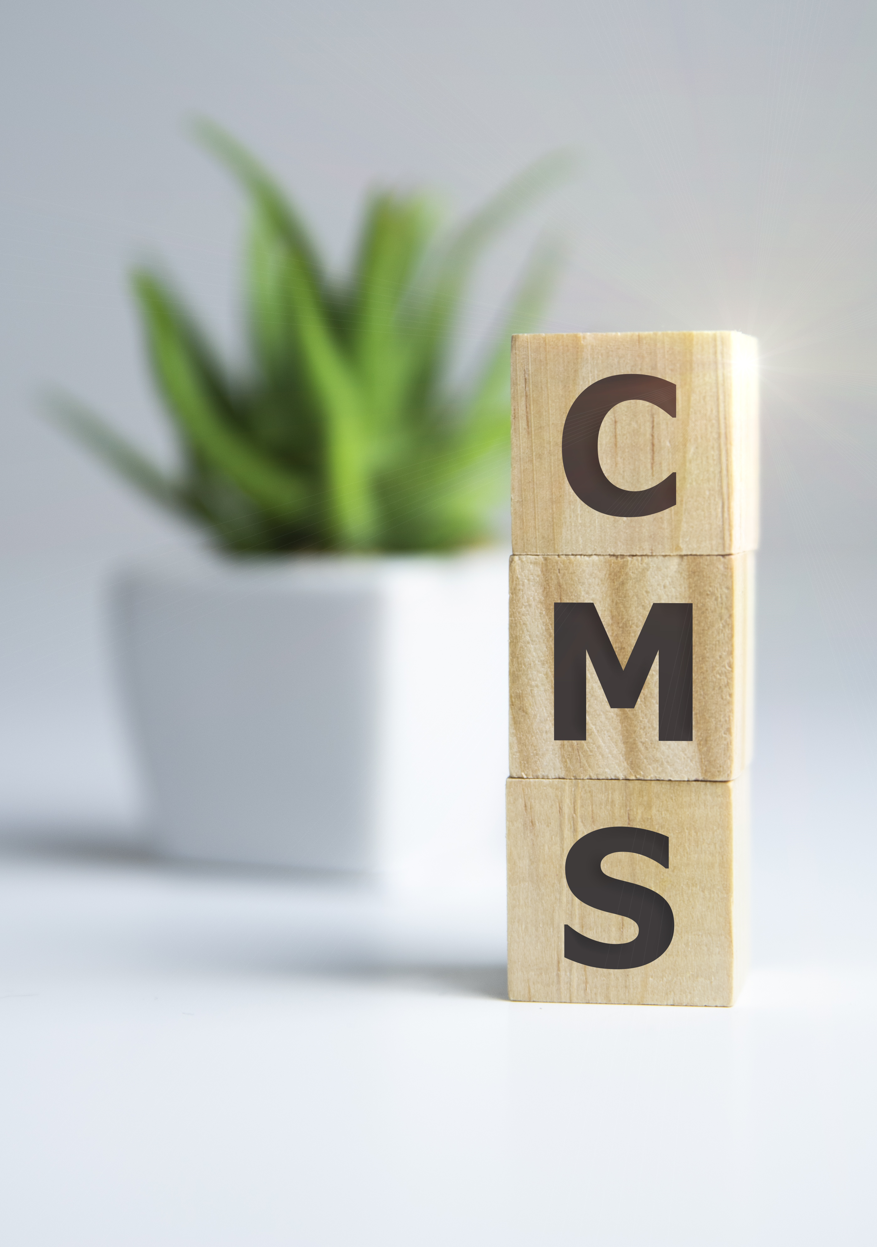 CMS Specialist-Wanted